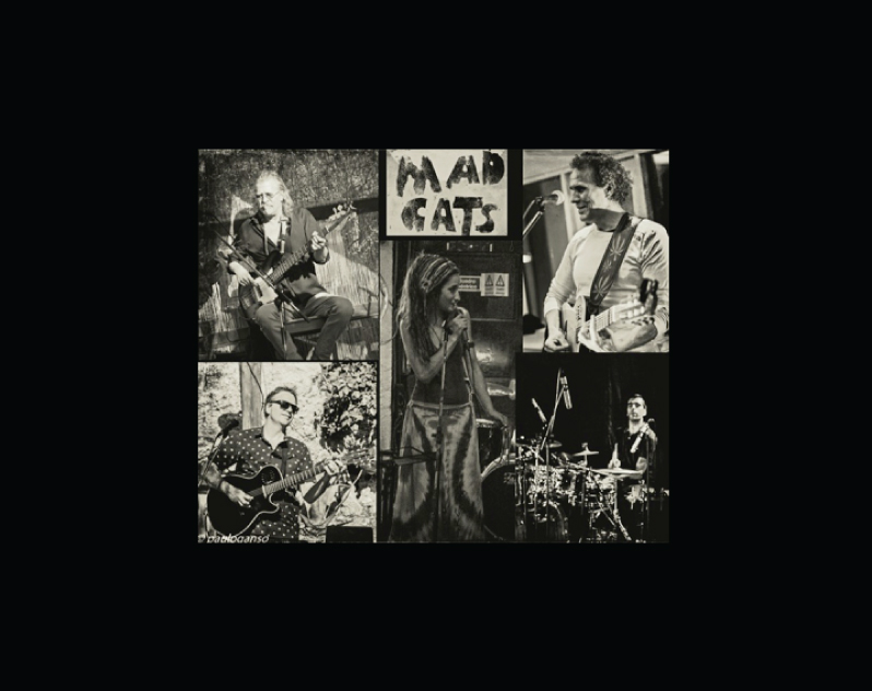 Mad Cats